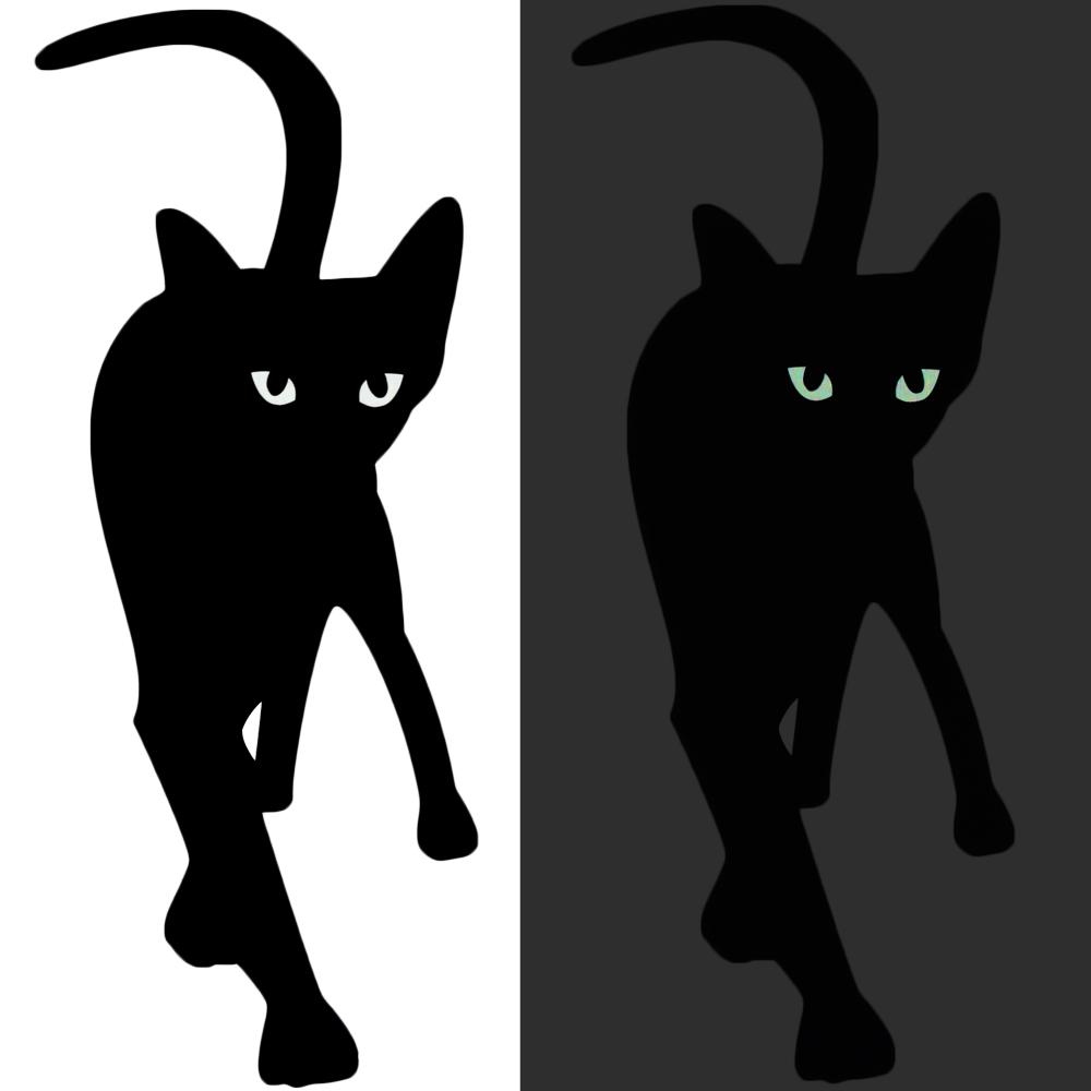 Wandtattoo Katze mit leuchtenden Augen bei Nacht