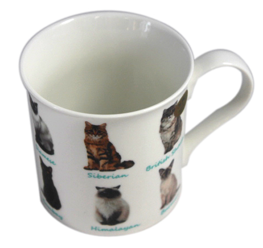 Tasse Katzen Kaffeetasse mit Katzenrassen